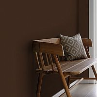 Краска Little Greene Absolute Matt Emulsion цвет 32 Spanish Brown. 2,5 л